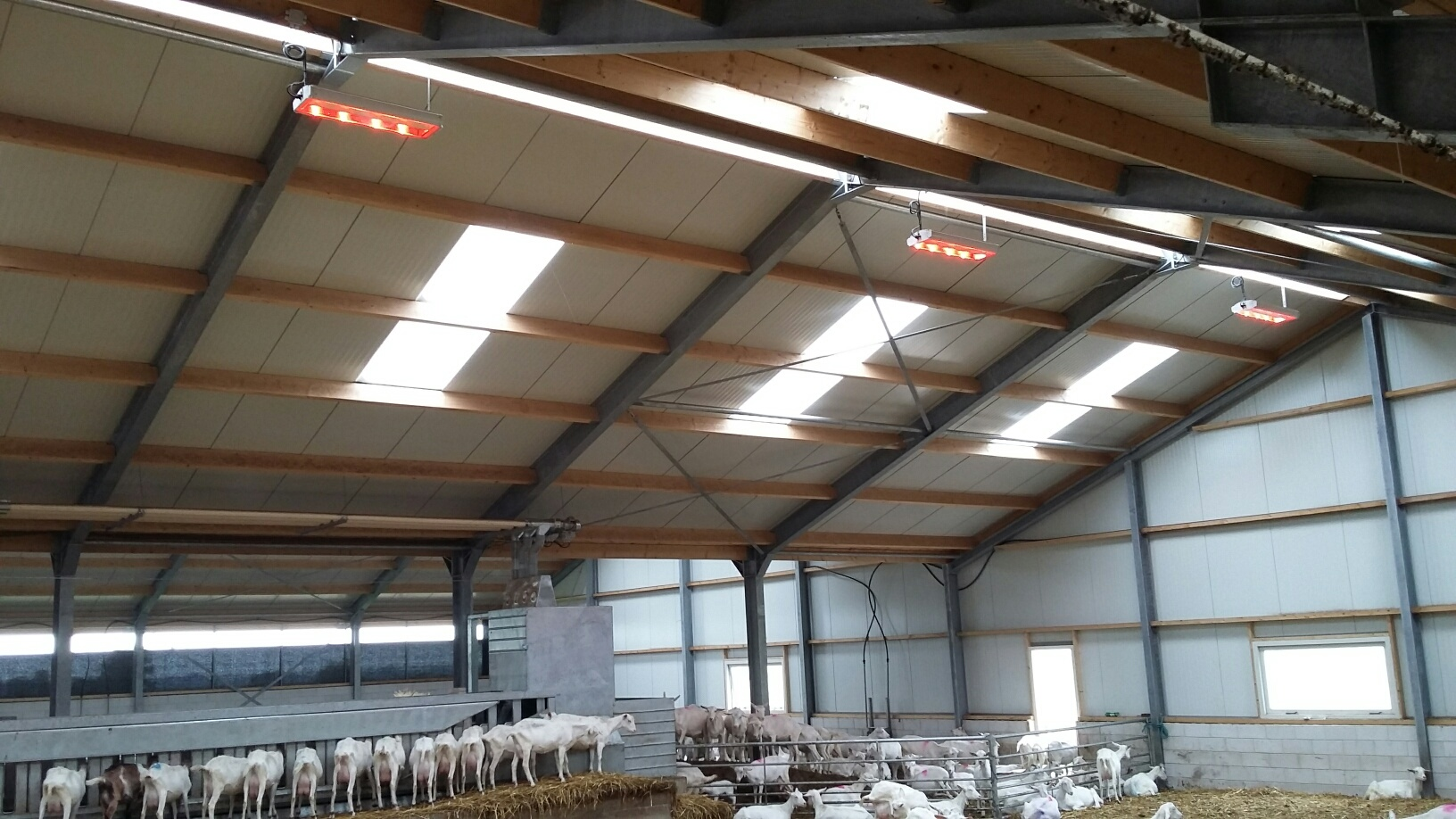 Agrilight Pro32 LED3