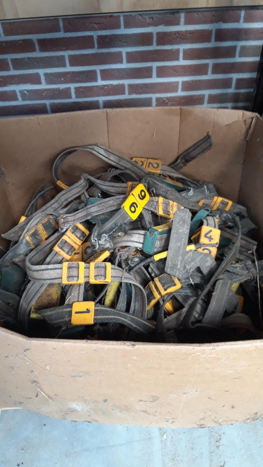 Diverse halsbanden met transponders